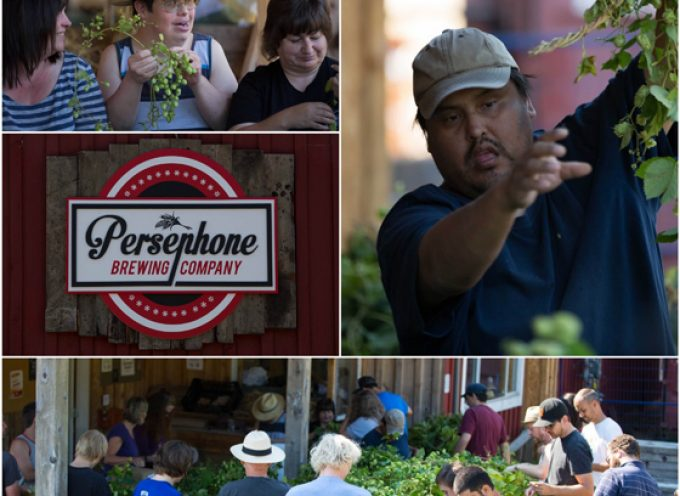 Persephone Brewing Co. recognized with WOW inclusion award