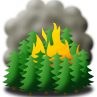 British Columbia Wildfires Info